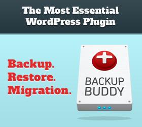 WordPress Backup Buddy