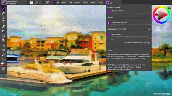 Corel Painter Essentials 7- Natürliche Medien