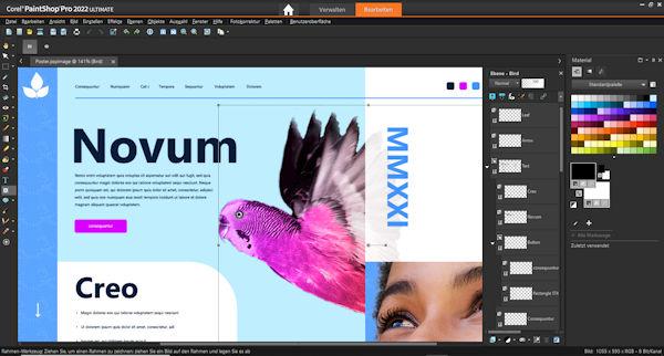 PaintShop Pro 2022 - Frame-Tool